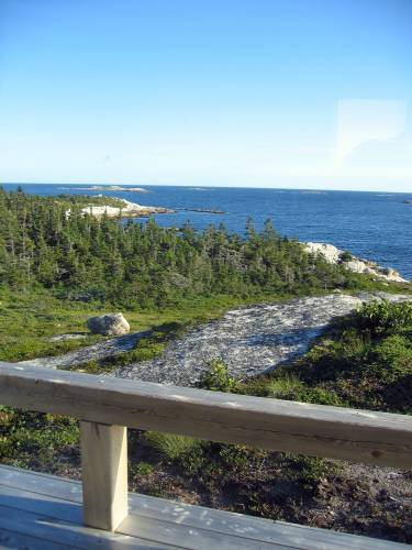 Artists' Cabin - Nova Scotia - Exterior photo of landscape - Selldorf Architects