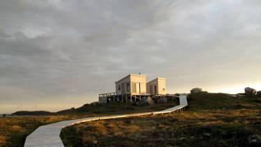 Artists' Cabin - Nova Scotia - Photo of path leading to cabin - Selldorf Architects